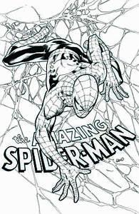 Amazing-Spider-man-798-B-amp-W-Virgin-Greg-Land-Store-Variant-Comic-1st-Red-Goblin