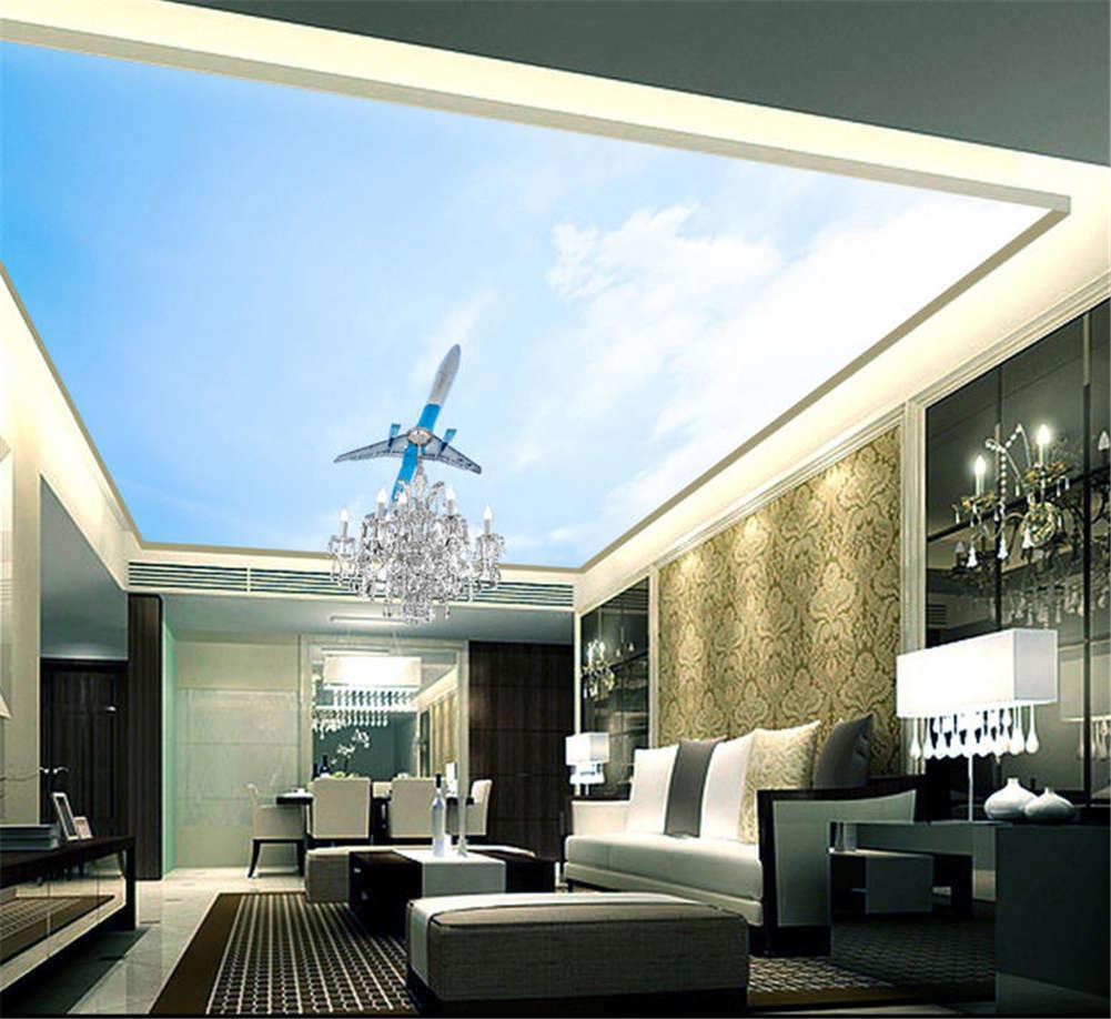 Visible Rich Plane 3D Ceiling Mural Full Wall Photo Wallpaper Print Home Decor