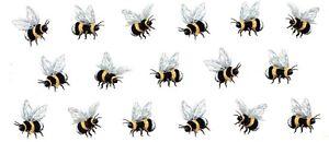 1-Bumble-Bee-Bumblebee-Wrap-7-1-2-034-X-3-1-4-034-Waterslide-Ceramic-Decal-Ox