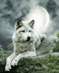 5D-Diamond-Painting-Part-Drill-DIY-Wolf-Embroidery-Cross-Stitch-Kits-Home-Decor