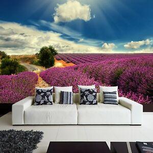 Wallpaper-Fleece-Photo-Natural-Lavender-Field-Landscape-Provence-Sky-Clouds