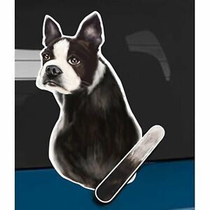 Boston Terrier Dog Rear Car Window Sticker + Wagging Tail To Fit On Wiper Arm