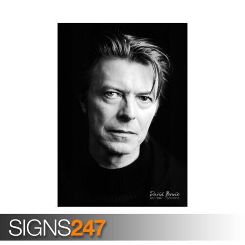 DAVID BOWIE LEGEND (1135) Photo Picture Poster Print Art A0 A1 A2 A3 A4