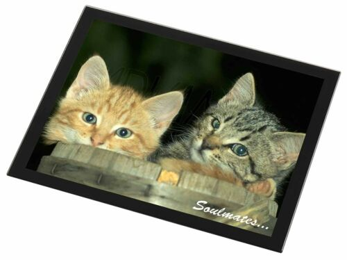 'Soulmates' Kittens in Beer Barrel Black Rim Glass Placemat Animal Ta, SOUL14GP