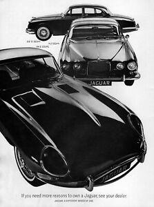 """1966 Jaguar XKE Coupe 3.8 S & 4.2 Sedan """"If You Need More Reasons"""" Original Ad"""