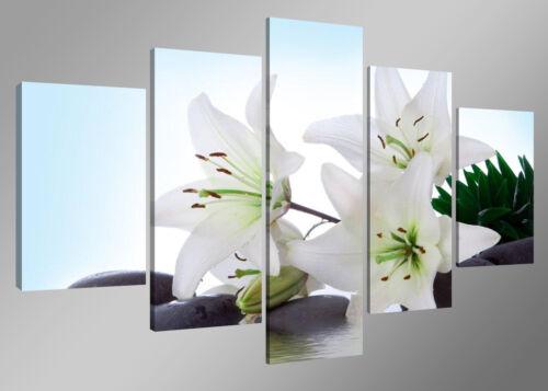 Bild 5 tlg Lilien Leinwand gerahmt 160x80cm XXL Bilder Nr 5504/>  Visario