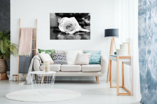 Black /& White Rose Canvas Wall Art Picture Print