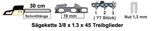 Schwert 30cm 3//8x1,3 passend für Shindaiwa Motorsäge 416 450 451 488 2 Ketten