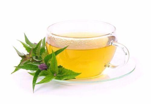 die Teepflanze Agastache Anisata pflücken Sie frischen Bio-Tee in Ihrem Garten