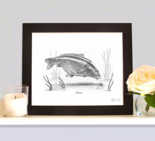 Bazil légendaire Pêche à La Carpe dessin monté Imprimé Photo Classique Collection