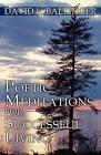 Poetic Meditations for Successful Living by David L Ballinger (Paperback / softback, 2011)