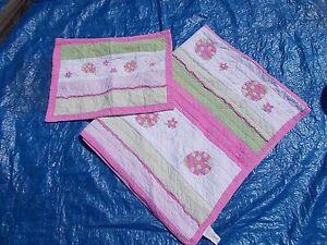 Girls Pink Green Twin Quilt Pillowcase Ladybugs Bedding