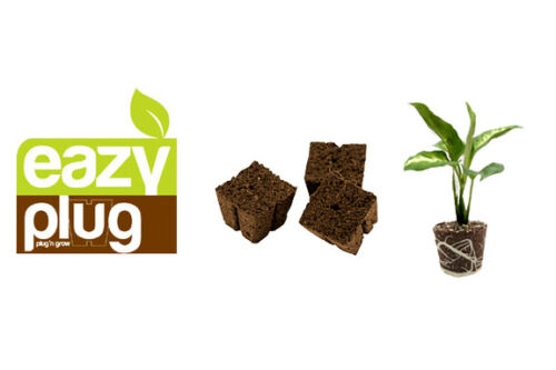 12x Eazy Block® 7,5x7,5cm organische Anzuchtblöcke Eazy Plug® Grow