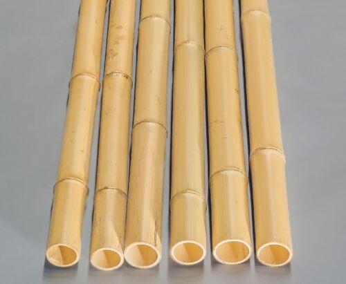 gebleicht Bambusstange Moso 100cm gelb Durch Bambusrohre Bamboo 6,8 bis 8cm