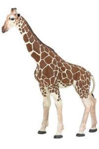 Papo Giraffe Toy Safari Wild pretend Animal NEW 50096