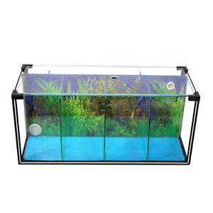 aquarium zucht becken betta 24 l garnelen quarant ne ausstellungsbecken ebay. Black Bedroom Furniture Sets. Home Design Ideas