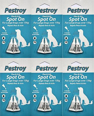12 Mesi Pestrroy Antipulci & Tic Trattamento Per Cani Grossi Il Prezzo Di 9