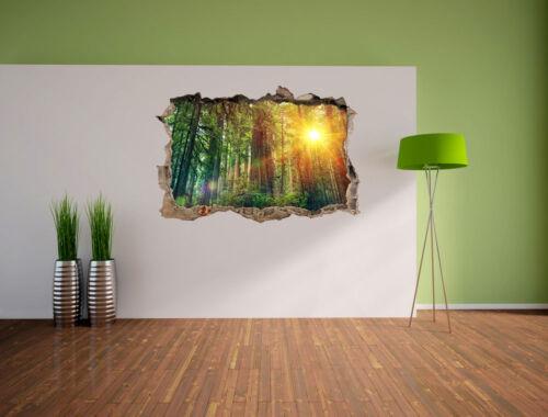 3D-Look Durchbruch Wandtattoo Aufkleber-Sticker Wald bei Sonnenlicht