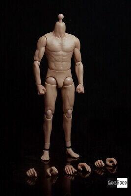 GangHood G002 1//6th Asian Muscle Body
