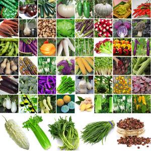Erbstueck-Gemuesesamen-Non-GMO-Garten-Bio-Pflanze-Tomate-Pfeffer-Vegetable-Seeds