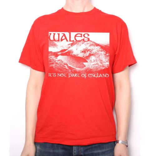 il ne fait pas partie de l/'Angleterre T SHIRT-Welsh t-shirt rugby etc Wales