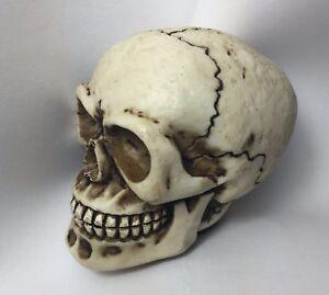 Suuonee Gear Shift Knob Lever Skeleton Skull Head Many Faces Car Manual Gear Shift Knob Stick Lever Shifter Universal