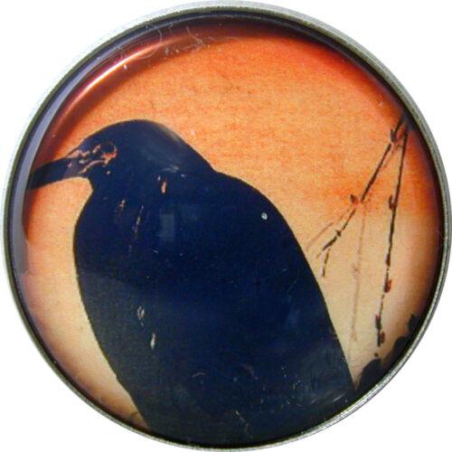 Crystal Dome Button Black Raven Bird  AF 09