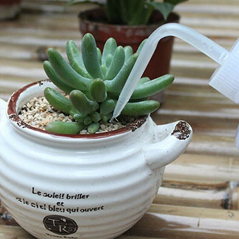 250mL Water Beak Pouring Kettle Tool Succulents Plant Flower Squeeze Bottl_pf