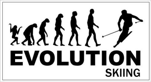 Novelty Sticker Snow EVOLUTION SKIING 20 cm x 10 cm Board Downhill