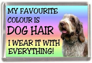 Italian-Spinone-Dog-Fridge-Magnet-034-My-Favourite-Colour-is-Dog-Hair-034-by-Starprint