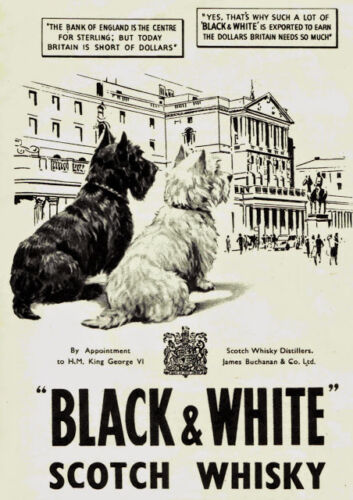 Art print POSTER vintage Black /&White