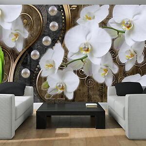 Das Bild Wird Geladen POSTER WANDBILD TAPETE FOTOTAPETE FOTO ORCHIDEE WEISS  BLUMEN