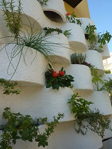 Bloomwall vertical herb or deco plant living wall garden