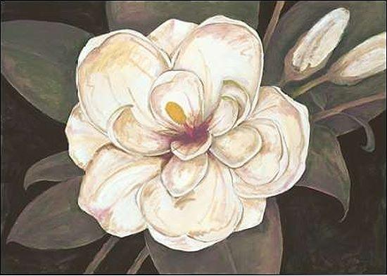 Fillippo Ioco  Southern Magnolia Keilrahmen-Bild Leinwand Blaumen Magnolie modern