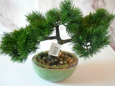 Tori Home Cedar Bonsai Tree In Planter For Sale Online Ebay