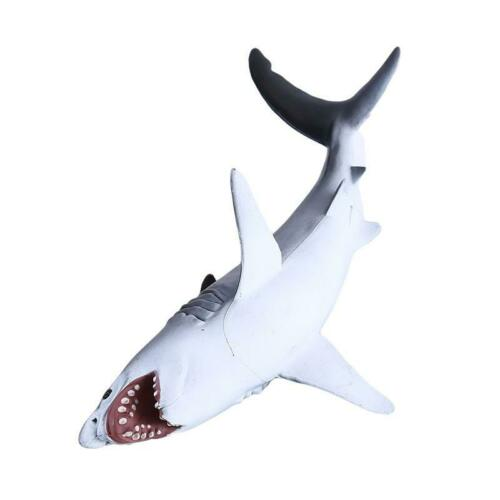 Creative 3D Sea Ocean Jungle Wild Animal Shark Toy Educational Figure Model T