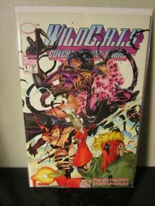 WILDCATS-SPECIAL-1-1993-IMAGE-COMICS-TRAVIS-CHAREST-ART-BAGGED-BOARDED