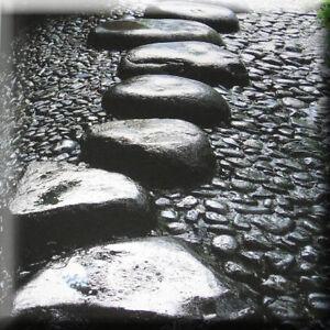 Japanese garden book stone paving path design zen for Japanese garden path design