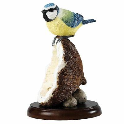 Border Fine Arts Studio Silkie Cockerel A23998 Fancy Fowl