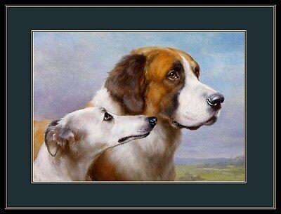 Bernard Dog Head Art English Picture Print Saint St