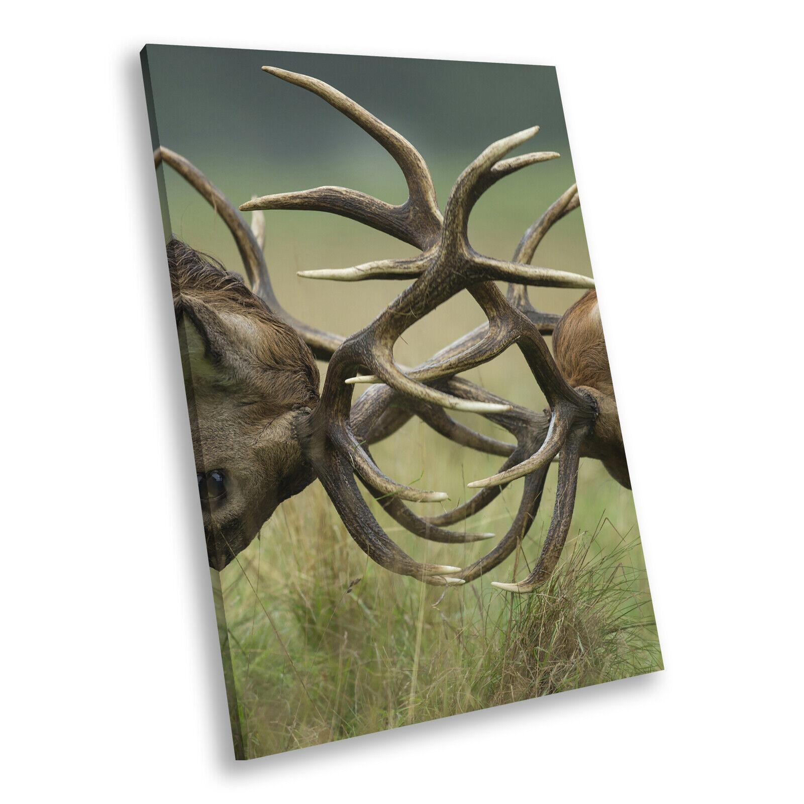 Stag Deer Antler Grün  Portrait Animal Canvas Framed Kunst Large Bild