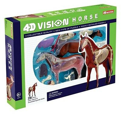 4D Vision Kit #26101  TEDCO SCIENCE TOYS HORSE ANATOMY MODEL//PUZZLE