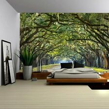 Long Pathway in an Arch Tree Covered Forest - Wall Mural - 100x144 inches