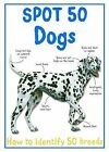 Spot 50 Dogs by Miles Kelly Publishing Ltd (Paperback, 2011)