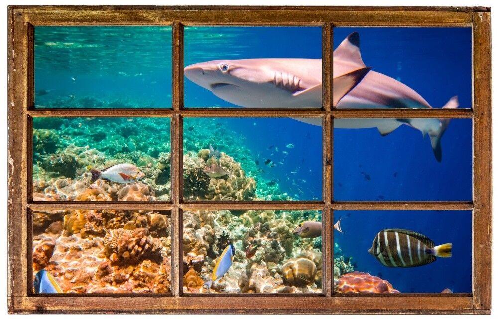 Hai Meer Fische Korallen Wandtattoo Wandsticker Wandaufkleber H0165