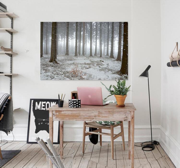 3D Natur Schnee Wald Wiese 9255 Fototapeten Wandbild BildTapete AJSTORE DE Lemon