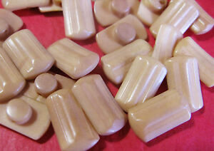 FAB-SET-OF-6-ART-DECO-VEGETABLE-IVORY-TAGUA-NUT-BUTTONS-1-6-CM-MAX
