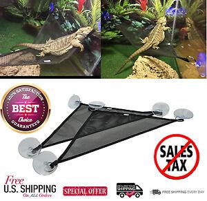 image is loading 2 breathable mesh reptile bearded dragons chameleon gecko  2 breathable mesh reptile bearded dragons chameleon gecko hammock      rh   ebay
