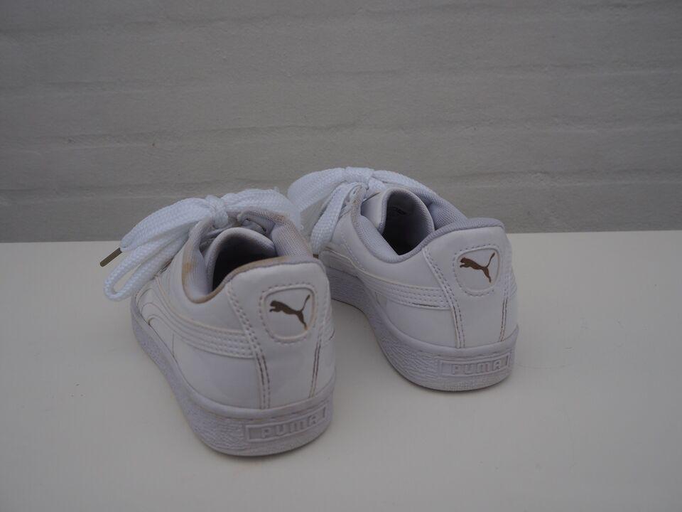 Baggrunde : hvid, kondisko, Puma, fodtøj, produkt, udendørs
