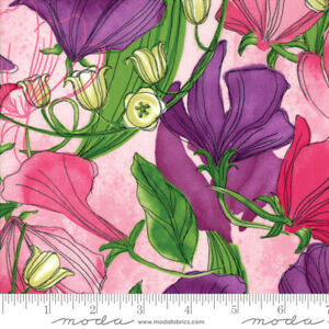 SWEET-PEA-amp-LILY-Moda-quilt-fabric-3-yds-pink-Robin-Pickens-48640-18-SHIPS-FREE